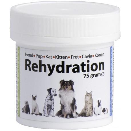 Rehydration Electrolyte mix 75 gram